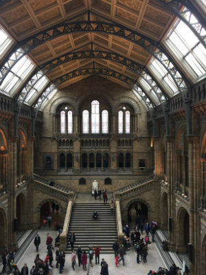 Little Post_Travel Diary London Natural History Museum