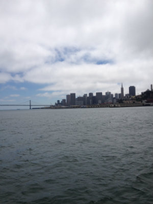 Little Post_Travel Diary San Francisco Skyline